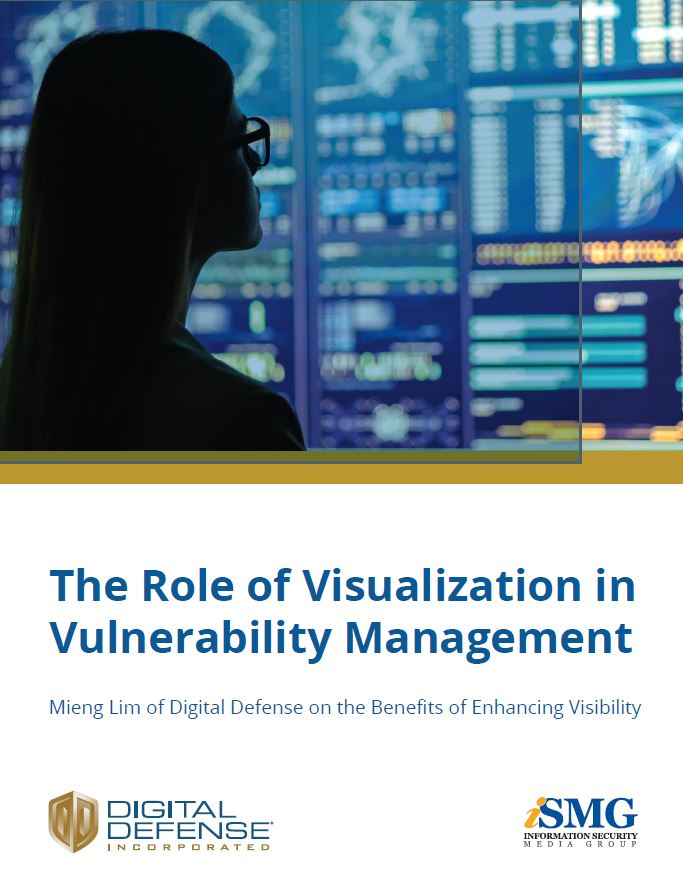 The Role of Visualization in Vulnerability Management