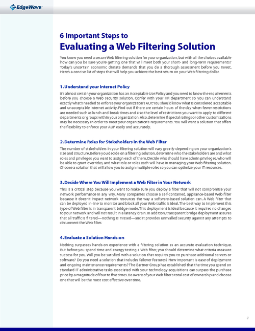 6 Important Steps to Choosing a Web Security Solution