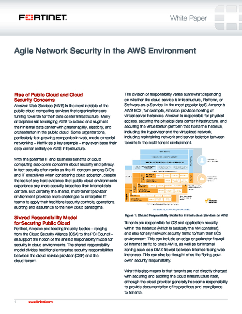 Agile Network Security in the AWS Environment