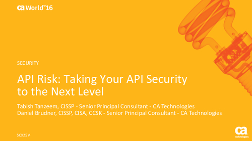 API Risk: Taking Your API Security to the Next Level