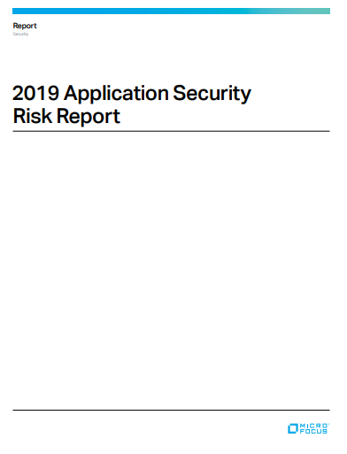 Application Security Risk Report