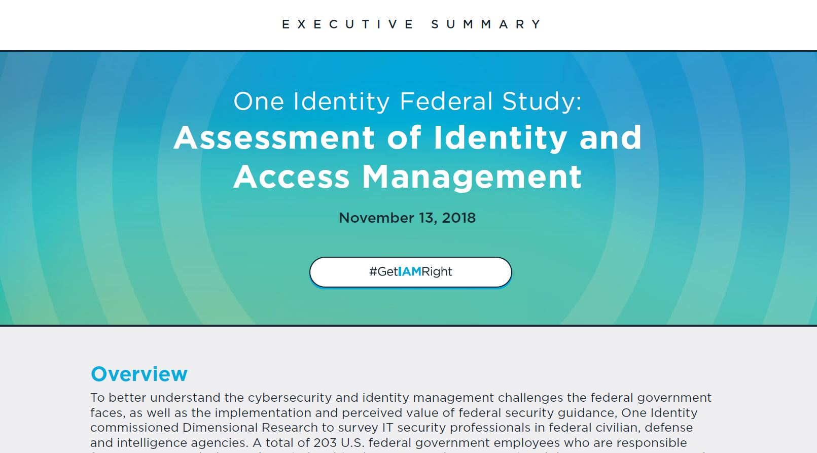 Assessment of Identity & Access Management