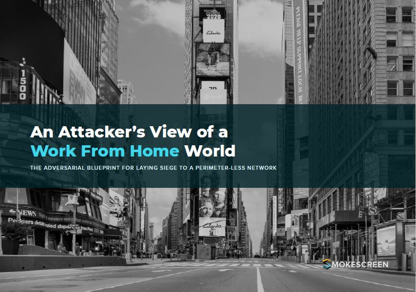 An Attacker's View of a Work From Home World