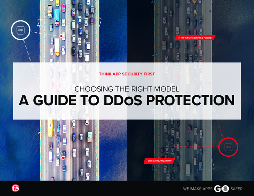 Choosing the Right DDoS Protection Model