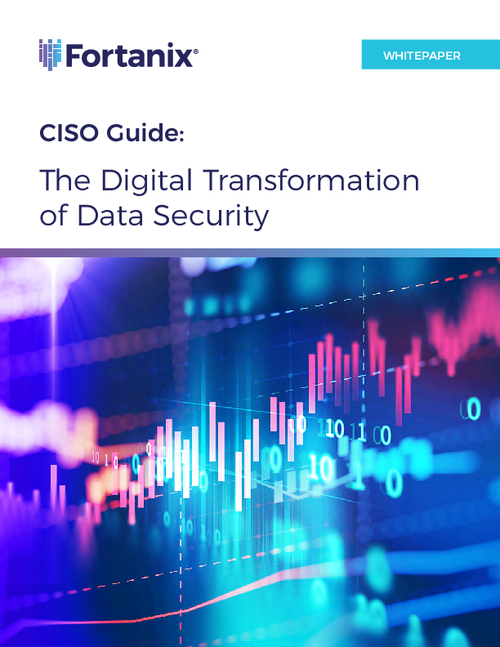 CISO Guide: The Digital Transformation of Data Security