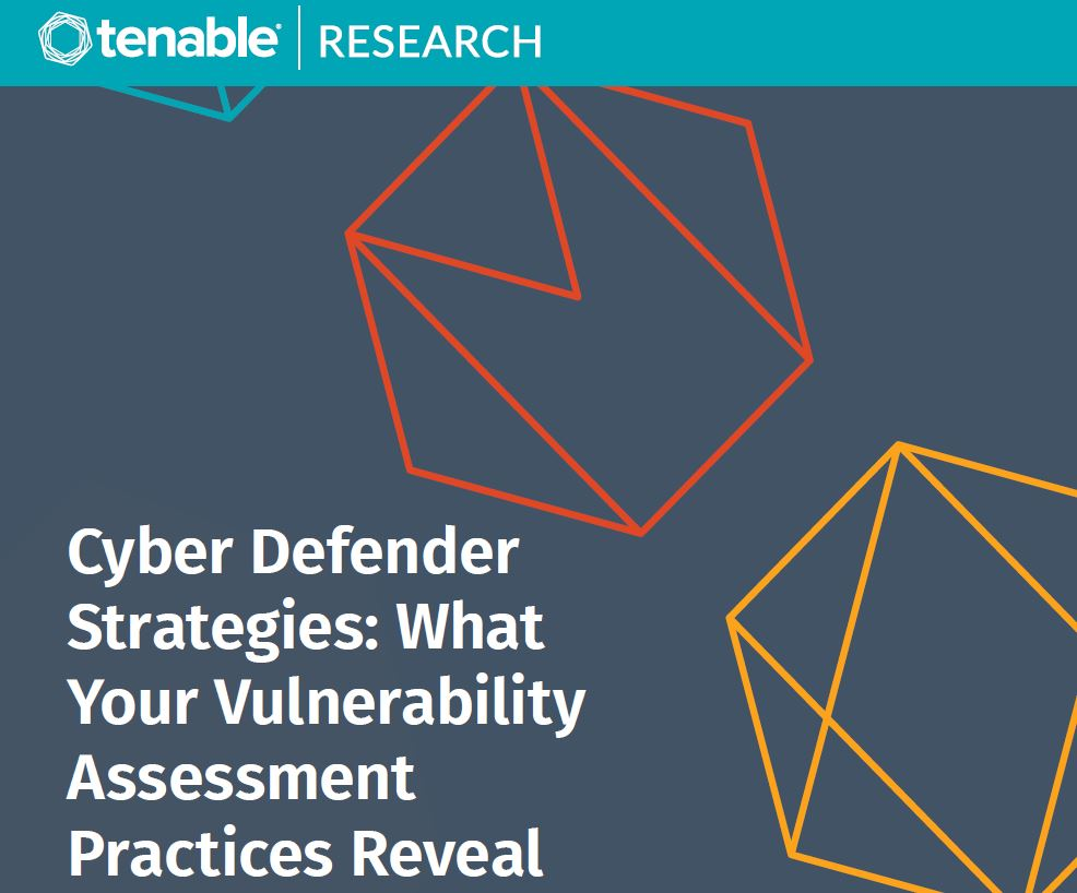 Cyber Defender Strategies: What Your Vulnerability Assessment Practices Reveal