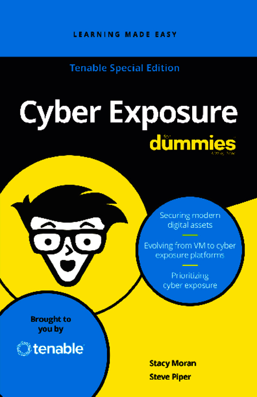 Cyber Exposure: The Easily Digested e-Book