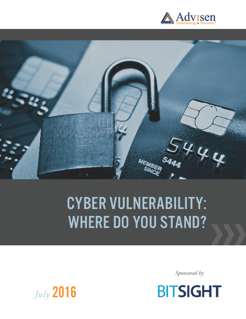 Cyber Vulnerability: Where Do You Stand?