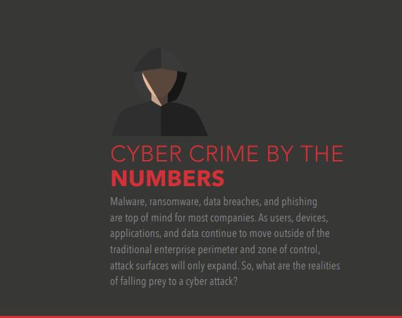 Cybercrime by the Numbers