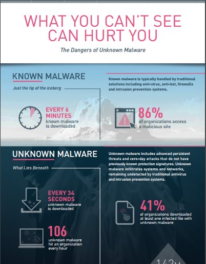 The Dangers of Unknown Malware