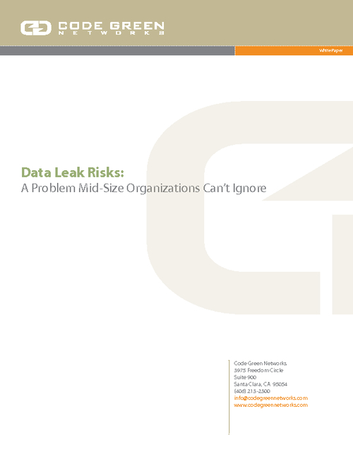 Data Leak Risks:  A Problem Mid-Size Organizations Cannot Ignore