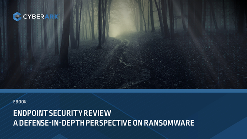 Endpoint Security Review: A Defense-in-Depth Perspective on Ransomware