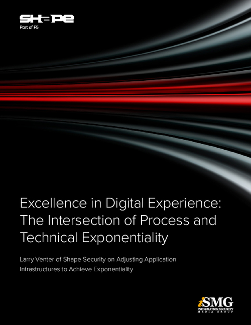 Excellence in Digital Experience: The Intersection of Process & Technical Exponentiality
