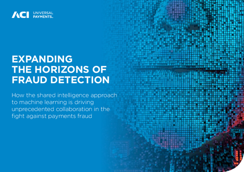 Expanding the Horizons of Fraud Detection