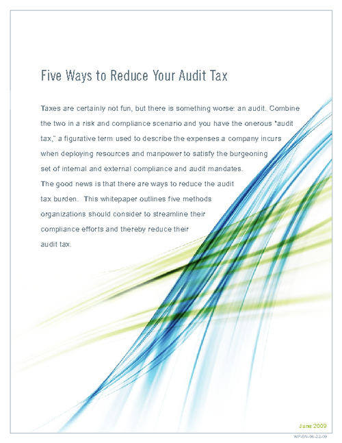 Five Ways to Reduce Your IT Audit Tax