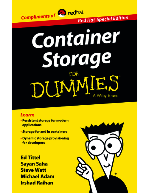 Government Agencies: 10 Reasons to Get on the Container Storage Bandwagon