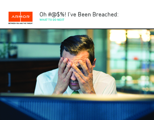 A Guide to Surviving a Cyber Breach