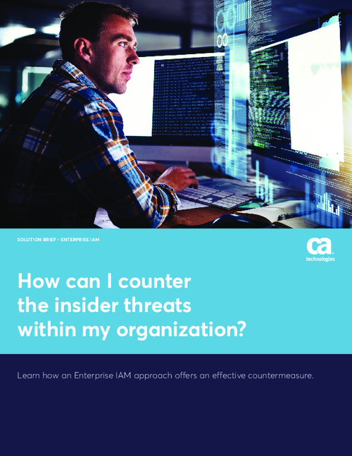 How can I counter the insider threats within my organization?