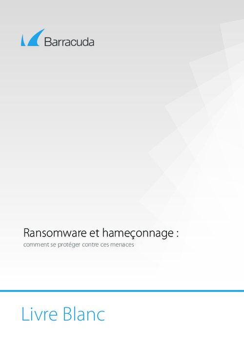 How to Avoid Falling Victim to Ransomware and Phishing (French Language)