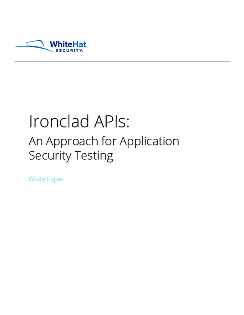 Ironclad APIs: An Approach for Application Security Testing