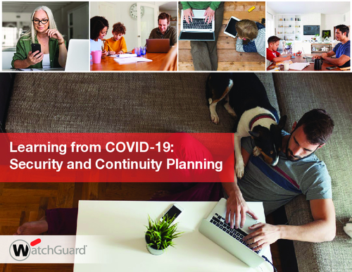 Learning from COVID-19: Security and Continuity Planning