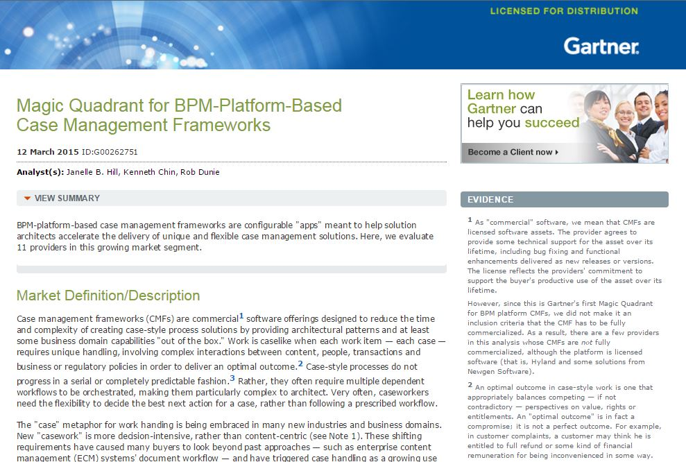 BPM-Platform-Based Case Management Strategies