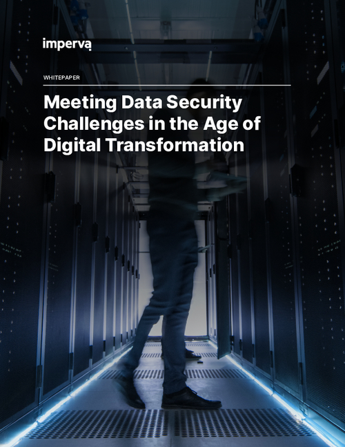 Meeting Data Security Challenges in the Age of Digital Transformation