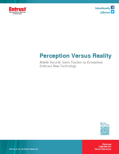 reality vs perception essay