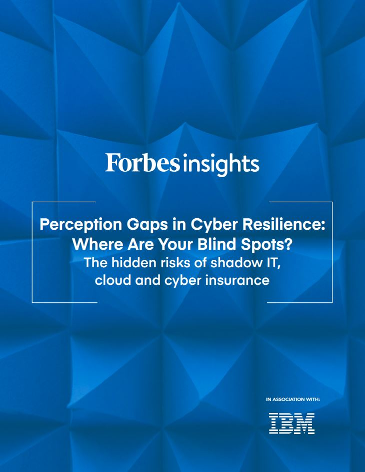 Perception Gaps in Cyber Resilience: Where Are Your Blind Spots?