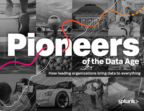 Pioneers of the Data Age: How Leading Organizations Bring Data to Everything