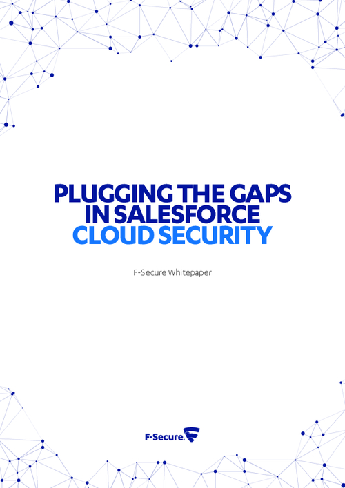 Plugging the Gaps In Salesforce Cloud Security