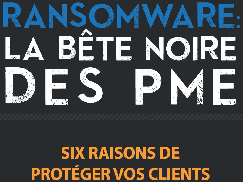 Ransomware: An SMB's Worst Nightmare (French Language)