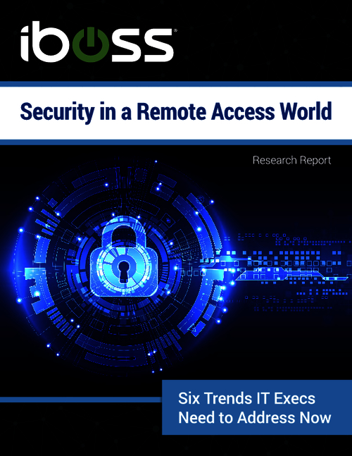 Security in a Remote Access World
