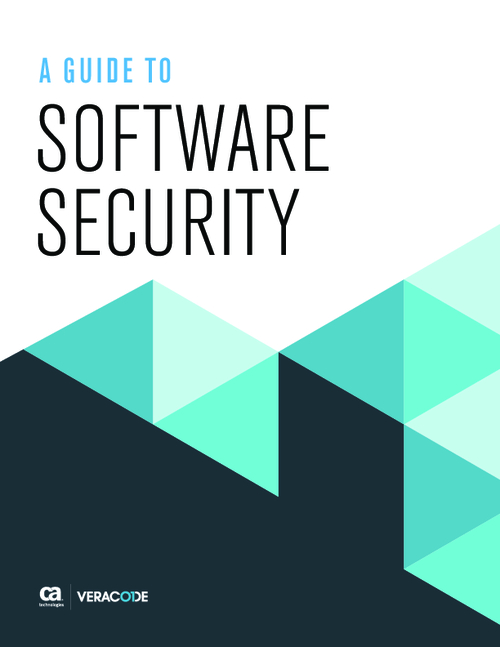 Why Software is Vulnerable