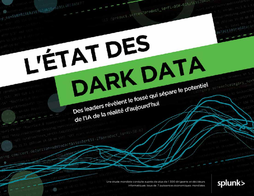 The State of Dark Data French Version