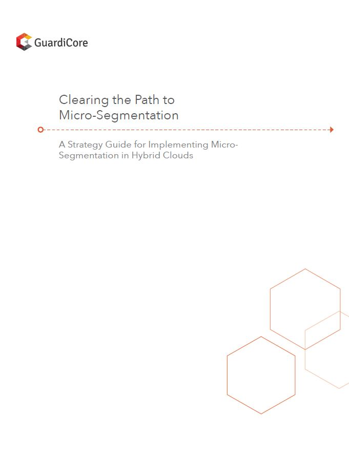 Strategy for a Successful Micro-Segmentation Journey