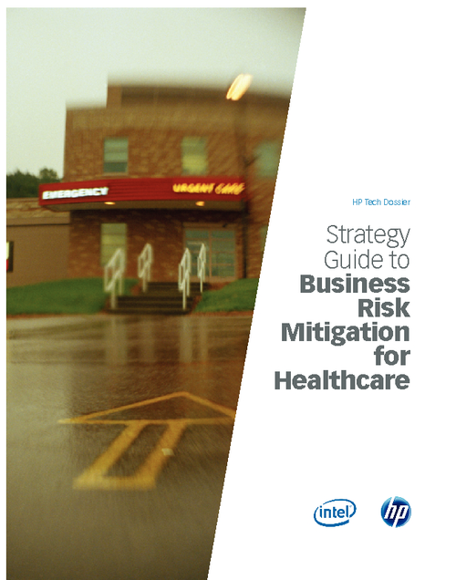 Strategy Guide to Business Risk Mitigation for Healthcare