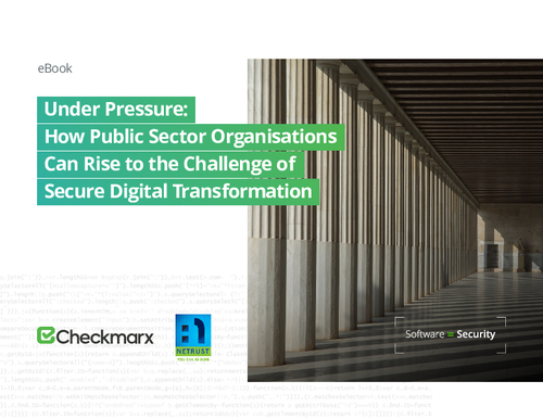 Under Pressure: Public Sector & Software Security