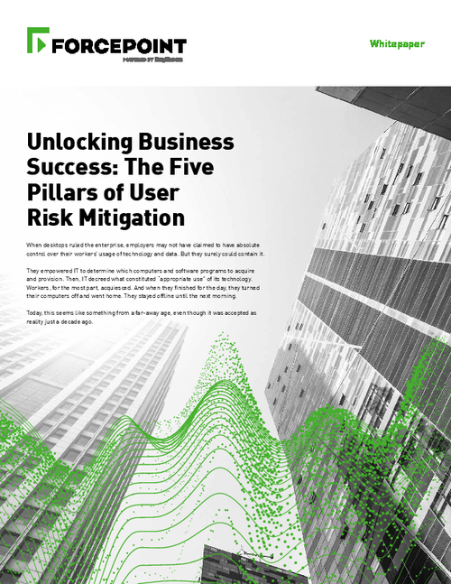 Unlocking Business Success: The Five Pillars Of User Risk Mitigation