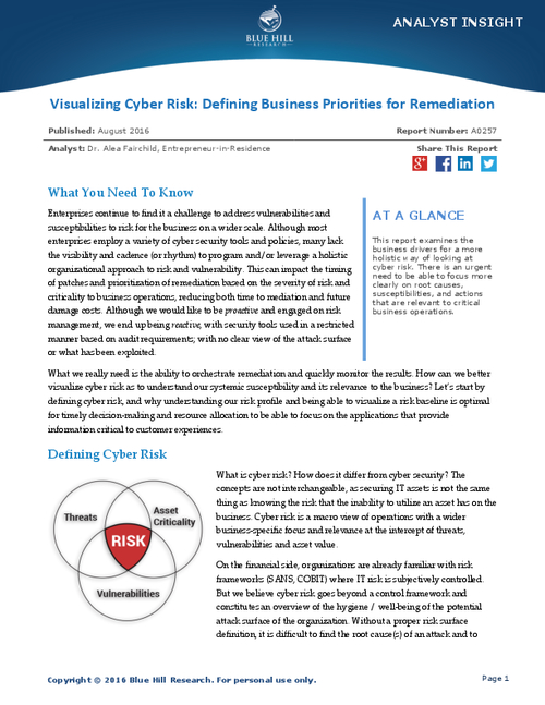 Visualizing Cyber Risk: Defining Business Priorities for Remediation