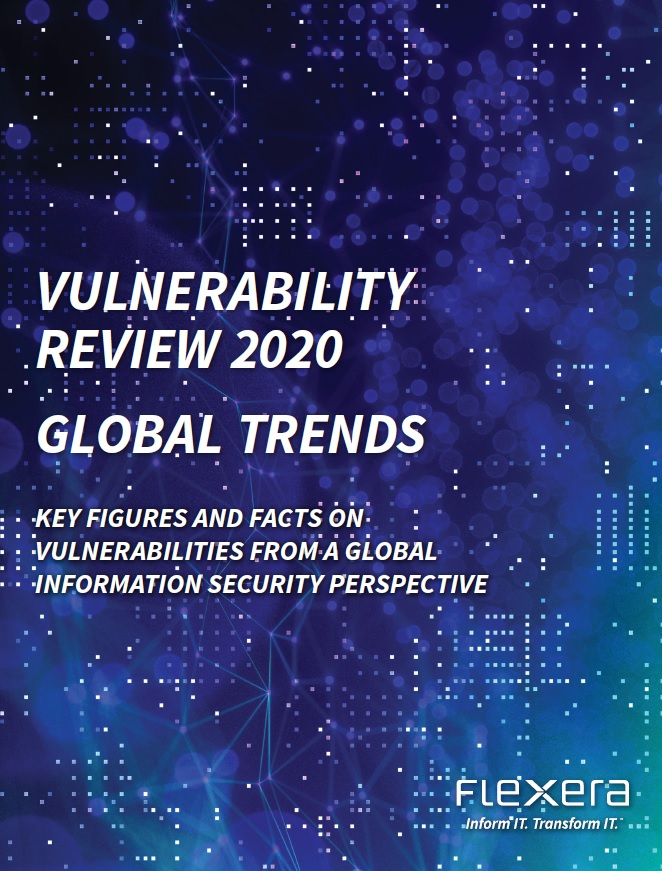 Vulnerability Review 2020: Global Trends