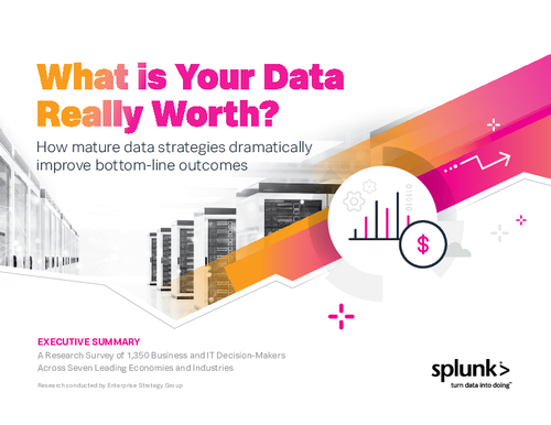 What is your Data Really Worth? Executive Summary